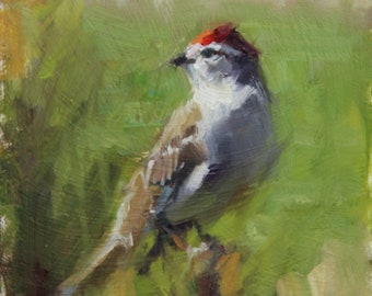 """Small original oil painting of a redpoll (6'x6"""")"""