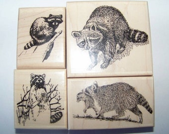 Racoon Raccoon - lot of 4 new mounted rubber stamps