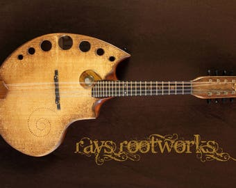 FlatBack Mandolin. Unique design by Rays Rootworks, Based on the fibonacci sequence. Handcrafted