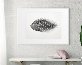 Large Feather Art Print // Living Room Art // Minimalist Photography // Large Scale Print // Feather Photography Still Life // Feather Art