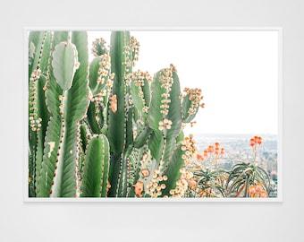 Large Cactus Print // Large Wall Art // Cactus Wall Art Los Angeles California // Oversized Art - Cactus Print Green & Orange Flowers