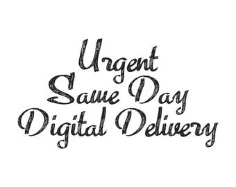 Urgent Same Day Digital Delivery Of Any Portrait