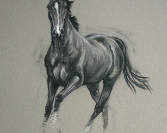 Beautiful Equine art horse art LE horse print horse gift 'Alert' from an original charcoal and chalk wall art home decor