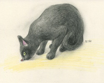 Cat original drawing - P005February2016