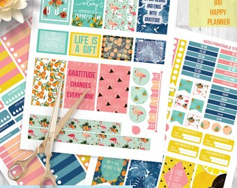 Gratitude Quotes printable planner stickers, Summer, fruit, birds BIG MAMBI Happy planner, Monthly / Weekly Kit, big happy Instant download