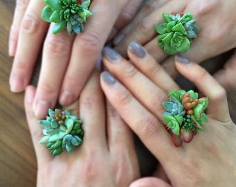 Live succulent statement ring