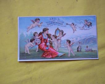 Hall's Vegetable Sicilian Hair Renewer Ad  prepared R. P. Hall & Co., Nashua, N. H. - vintage promotional card