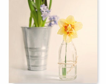 Still Life Print, flower photography, flower print, floral print, daffodil photo, fine art photography, nature print, home decor