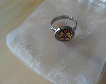Tiger stripe adjustable dome ring
