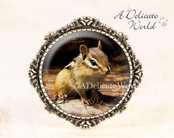 Chipmunk Brooch - Bronze Animal Jewelry, Woodland Animal Brooch Pin, Woodland Chipmunk Jewelry, Chipmunk Photo Jewelry, Animal Lover Gift