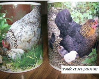 2 Mugs with photo of a hen with chicks