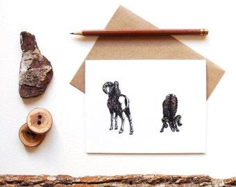 Big Horn Sheep Card - Big Horn Ram - Illustrated Greeting Card - Animal Couple - Animal Lover - Animal Pair - Canadian Wildlife Card