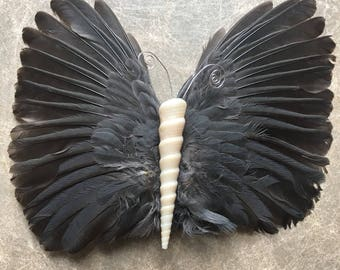 Feather wing with Turitela shell (from Costa Rica) butterfly hair clip