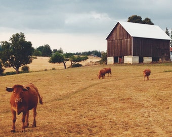 5x7 Print- Oregon Farm