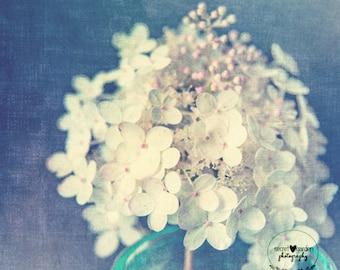 flower hydrangea white photography, stilllife photo print, flower photo print, nature photography, wall art, pastel colour, pretty photo