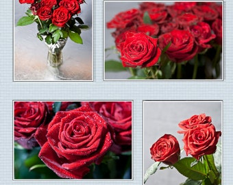 Set of 4 fine art prints - Wall decor red roses photography - floral prints canvas or paper print in sizes 8x12, 12x18, 18x24