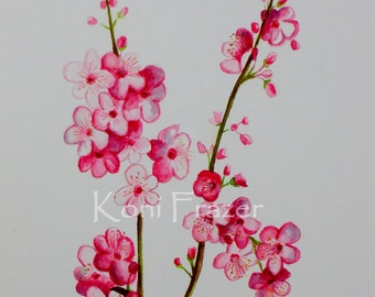 Cherry Blossoms, spring flowers, original watercolor painting