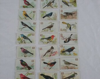 Dwight's Soda Trading Cards: Complete Set Useful Birds of America