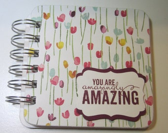 You Are Amazing Password Book