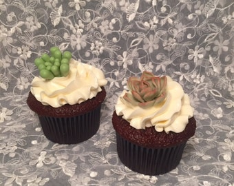 Mini Succulents cupcake toppers / Set of 12