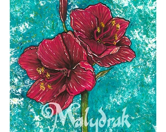 Red Amaryllis - Art Print
