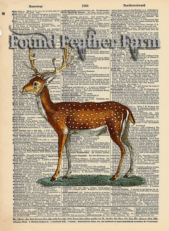"Vintage Antique Dictionary Page with Antique Print ""Fallow Deer Two"""