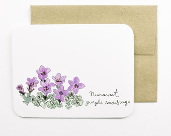 Nunavut | Purple Saxifrage | Flowers of the Provinces and Territories card with envelope | Canadian flowers