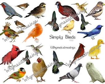 Digital Collage Sheet~ Simply Birds~ ATC~ Background~ Ephemera~ Instant Download