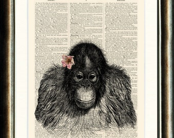 Vintage Orangutan Illustration  - vintage image printed on a page from a late 1800s Dictionary Buy 3 get 1 FREE