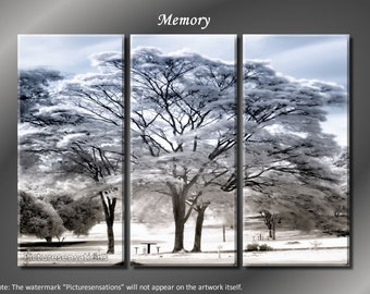 Framed Huge 3 Panel Art Distant Memory Giclee Canvas Print - Ready to Hang