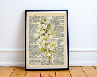 Vintage Flower Print Dictionary Page Original - Unique gift book page art - Botanical Art