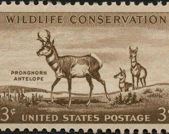 Five (5) vintage unused postage stamps - Pronghorn Antelope // 3 cent stamps