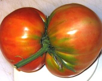 Bezrazmernyi Heirloom Giant Tomato Seeds