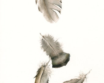 aquarelle art peinture-nature, art de la plume, Turquie plumes n ° 2 d'archives impression