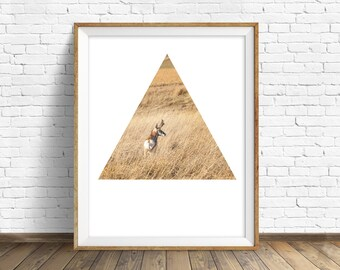 "antelope, pronghorn, wildlife, animal prints, instant download printable art, large wall art, geometric minimalist art prints - ""Wanderer"""