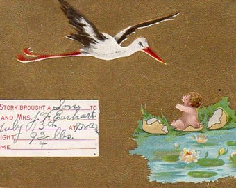 VINTAGE  POSTCARD, birth announcement, collected by junqueTrunque