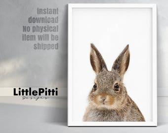 Rabbit print, woodland nursery decor, rabbit photo, baby shower gift, bunny rabbit, modern animal print, rabbit print wall art, digital art