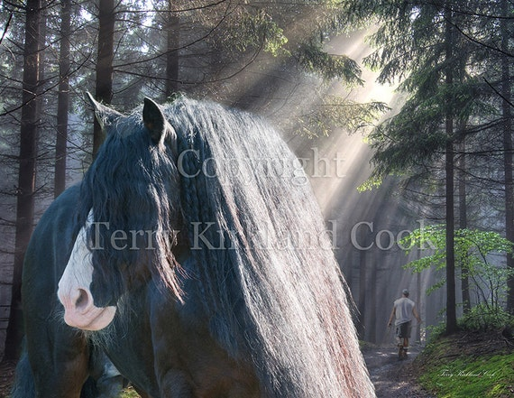 The Parting of Two Earthy Souls ~ Copyrighted Photograph by Terry Kirkland Cook