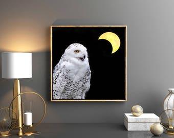 snowy owl crescent moon eclipse photograph, spirit animal bird photo, yellow home decor, dark clarity spiritual art print magic meditate zen