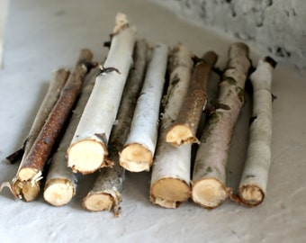 15 Birch sticks, Birch Log, White Birch Branches. Decorative Birch Wood Birch Wood Logs. Birch sticks for handmade