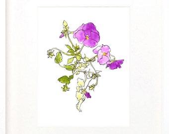 purple pansies print, watercolor drawing of pansies, digital file, print your own, flower art download, watercolor and pencil drawing, JPEG