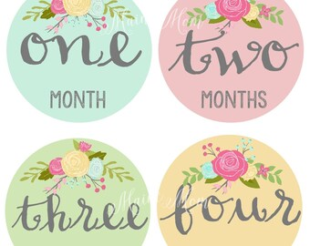 FREE GIFT, Baby Girl Month Stickers, Baby Monthly Stickers,  Roses, Flowers, Milestone Stickers, Bodysuit Stickers, Photo Prop