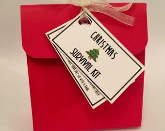 Christmas Survival Hangover Kit - Secret Santa Gift - Stocking Filler