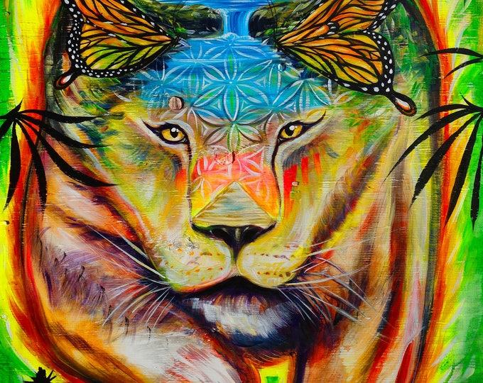 Lioness - HiRize - Prints ~ 2017