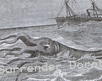 Polypus Squid Sea Monster Vintage Victorian Natural History Engraving To Frame 1887 Original Black & White