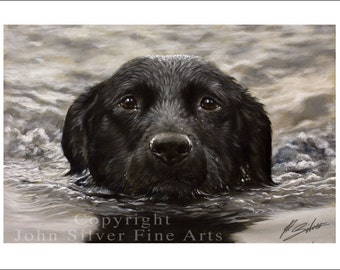 Black Labrador Dog Portrait by award winning artist JOHN SILVER. Personally signed A4 or A3 size Print. BL003SP