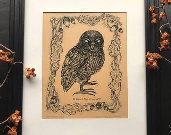 Haunted Owl - drawing by Allison L. Bush-Forsberg