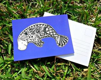 Manatee Animal Art Postcards