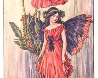 The Poppy Fairy - Cross stitch pattern pdf format