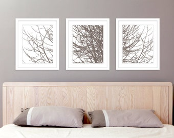 Modern Tree Branches Art Prints - Set of 3 11x14 prints - Taupe Brown Winter Tree Branches Wall Art - Bedroom Wall Art Bedroom Decor